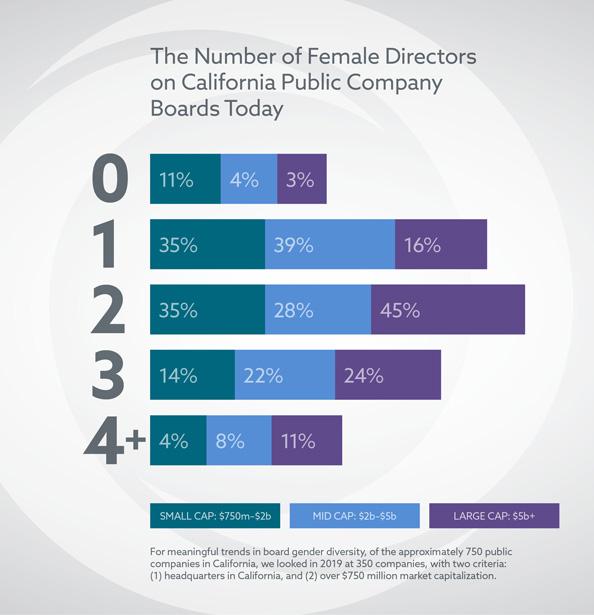 Board Diversity graph
