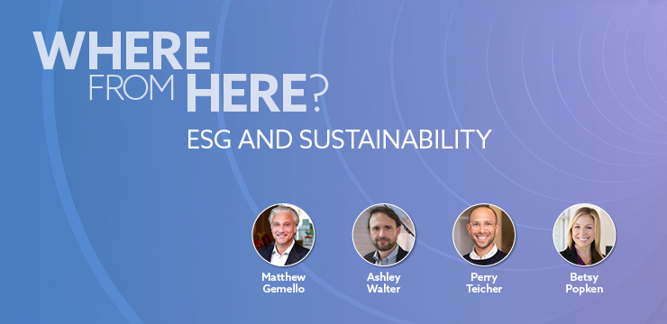 Where From Here? ESG and Sustainability