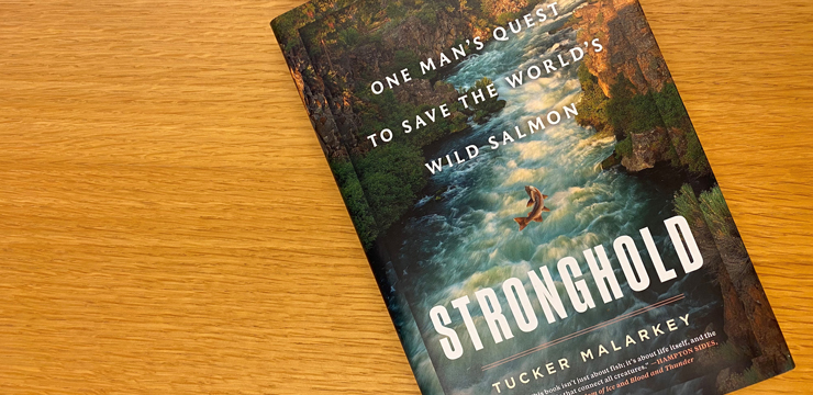 "photo of cover of book ""Stronghold"" by Tucker Malarkey"