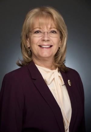 Arizona Senate President Karen Fann