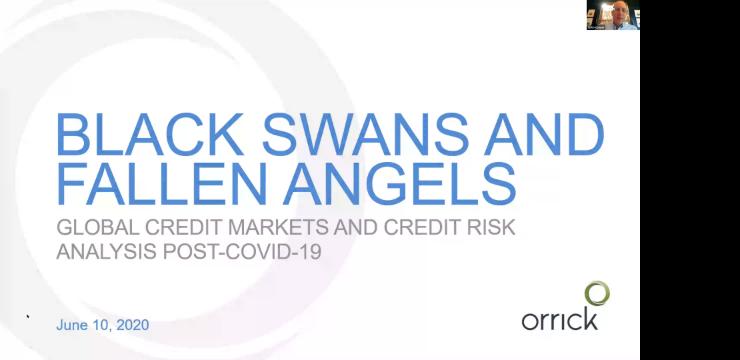 cover slide for Black Swans and Fallen Angels webinar